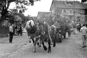 Festumzug mit Pferdefuhrwerk (Hille) zum 200jährigen Bestehen der Buntenböcker Schützengesellschaf, im Hintergrund die geschmückte Pension Höhlein. August 1958. Foto: Gerd Dasenbrook