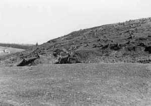Der Ziegenberg in Buntenbock 1943