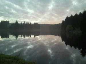 Morgenstimmung  | Buntenbock | Ziegenberger Teich |  Foto: Privat