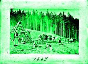 Web-Kreller-Fuhrleute-1889